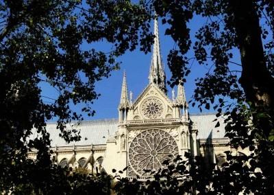 Notre-Dame-Rose-Window-SK