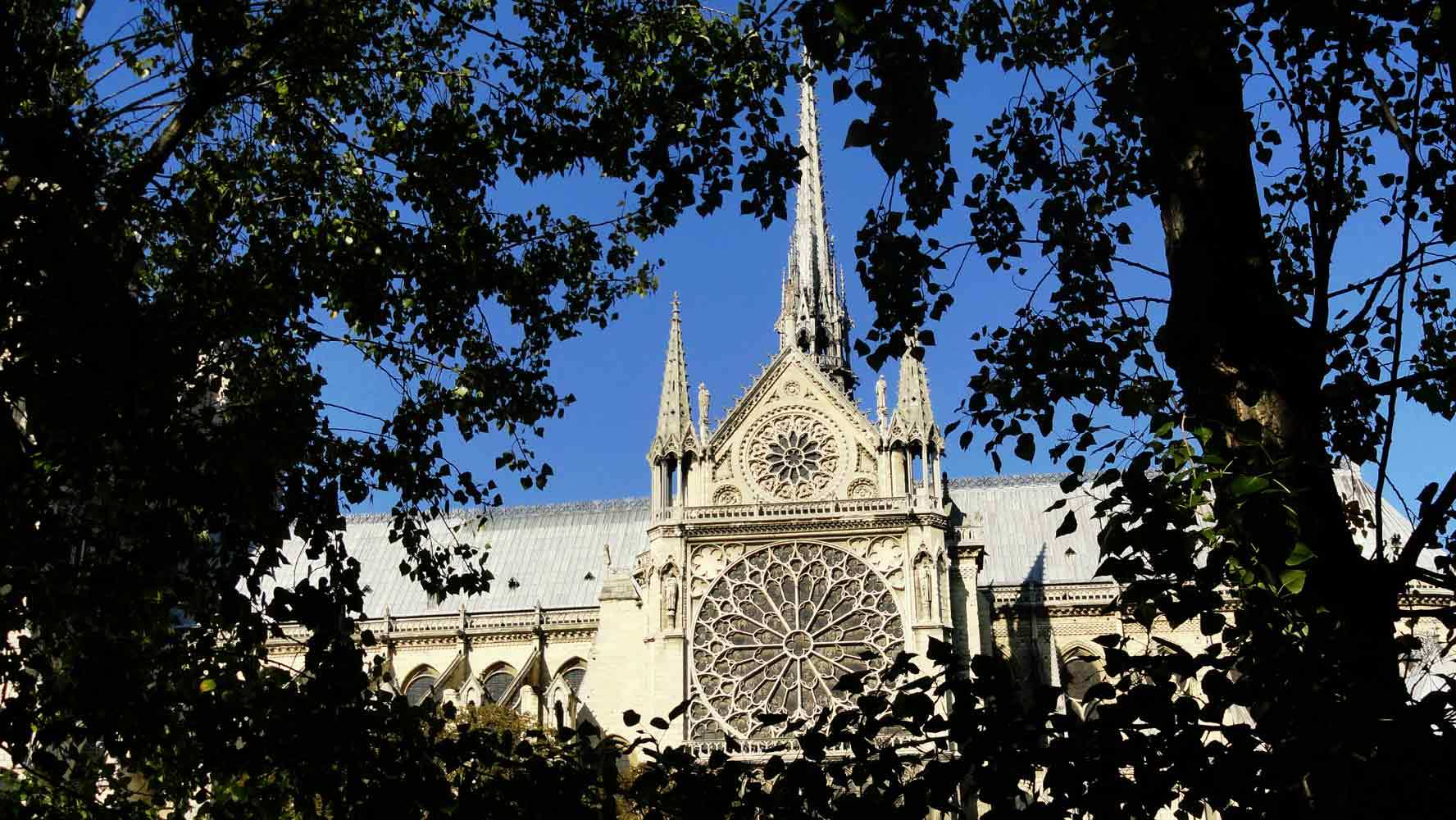 Notre Dame Rose Window Sk Trademark Vacations